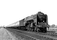 60508-Y-DaleBridge-1954-RPC496