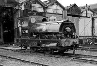 51231 Pugs Southport 140298 BR402