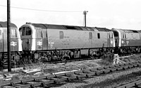 74003-Y-EastleighShed-110278-JC
